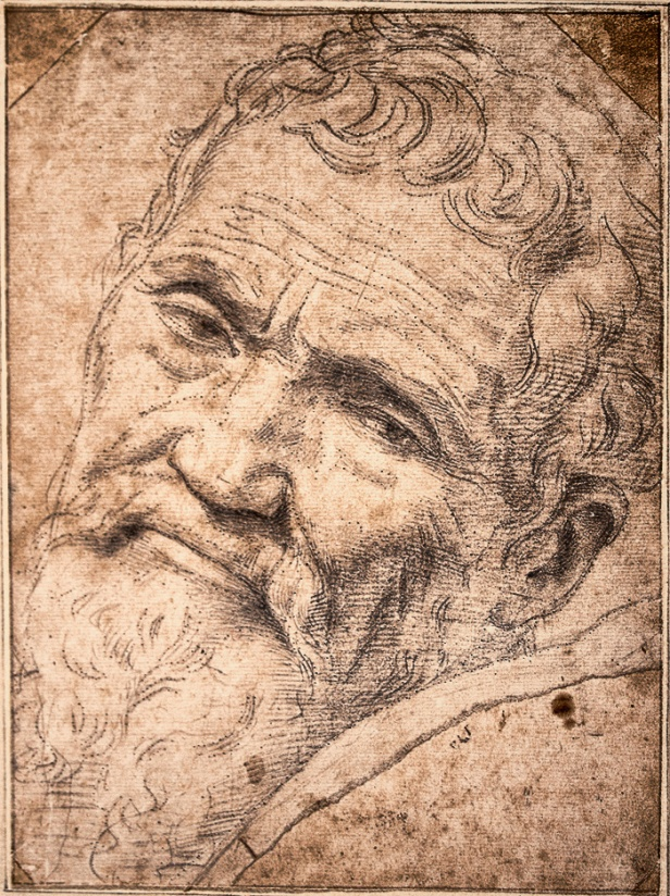 """If people knew how hard I worked to get my mastery, it wouldn't seem so wonderful at all."" - Michelangelo Portrait by Volterra"