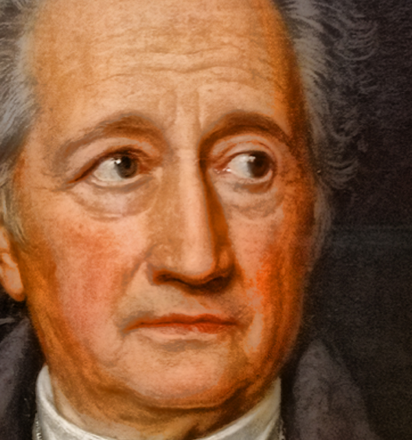 """Each one sees what he carries in his heart."""" - Johann Wolfgang von Goethe, artist, writer, author, politician"""