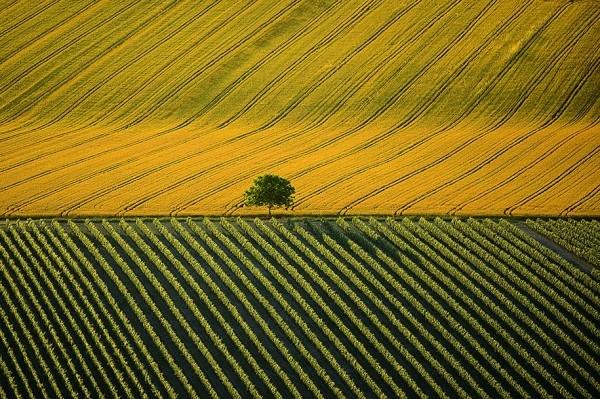 aerial-photography-yann-arthus-bertrand-13-600x399