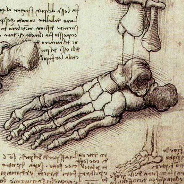 the works of leonardo da vinci essay