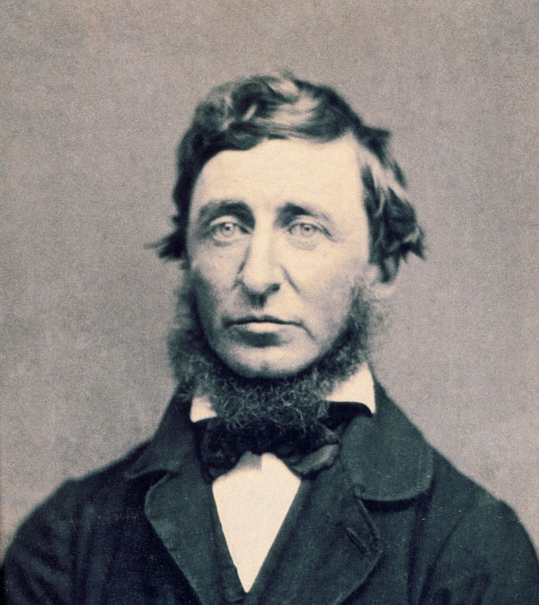 thoreau single men The mass of men live lives of quiet desperation what does this oft-quoted phrase of henry david thoreau really mean.