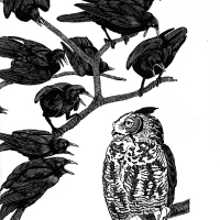 """The crow wished everything was black, the Owl, that everything was white."""