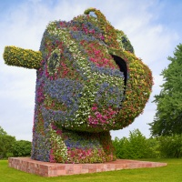 "Jeff Koons: ""50 million, chia pet"""